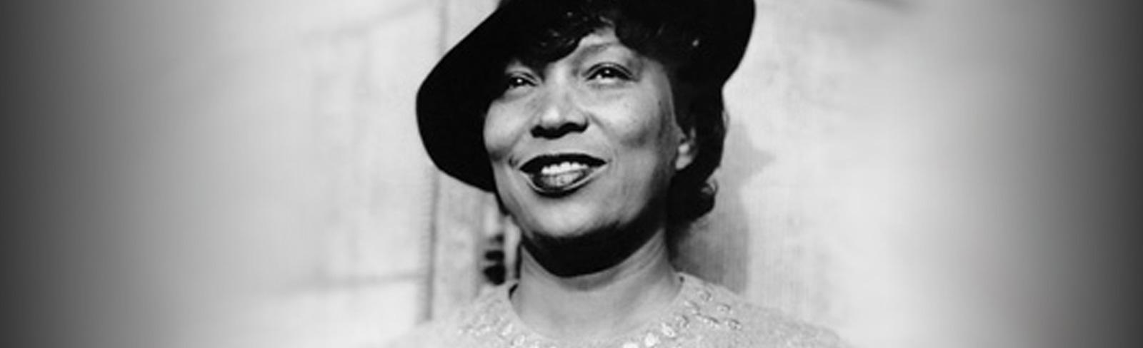 biography zora neale hurston writer the heroine collective image by